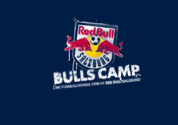 Bulls Camp 2015 in Leogang